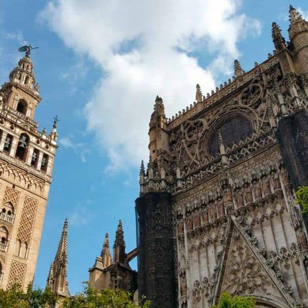 cathedral giralda sevilla tour