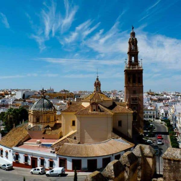 visit carmona guided tour from seville