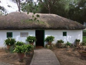 typical house seville to donana national park 2 days trip